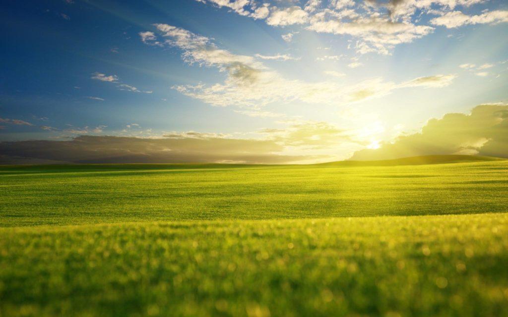 画像に含まれている可能性があるもの:空、雲、草、屋外、自然