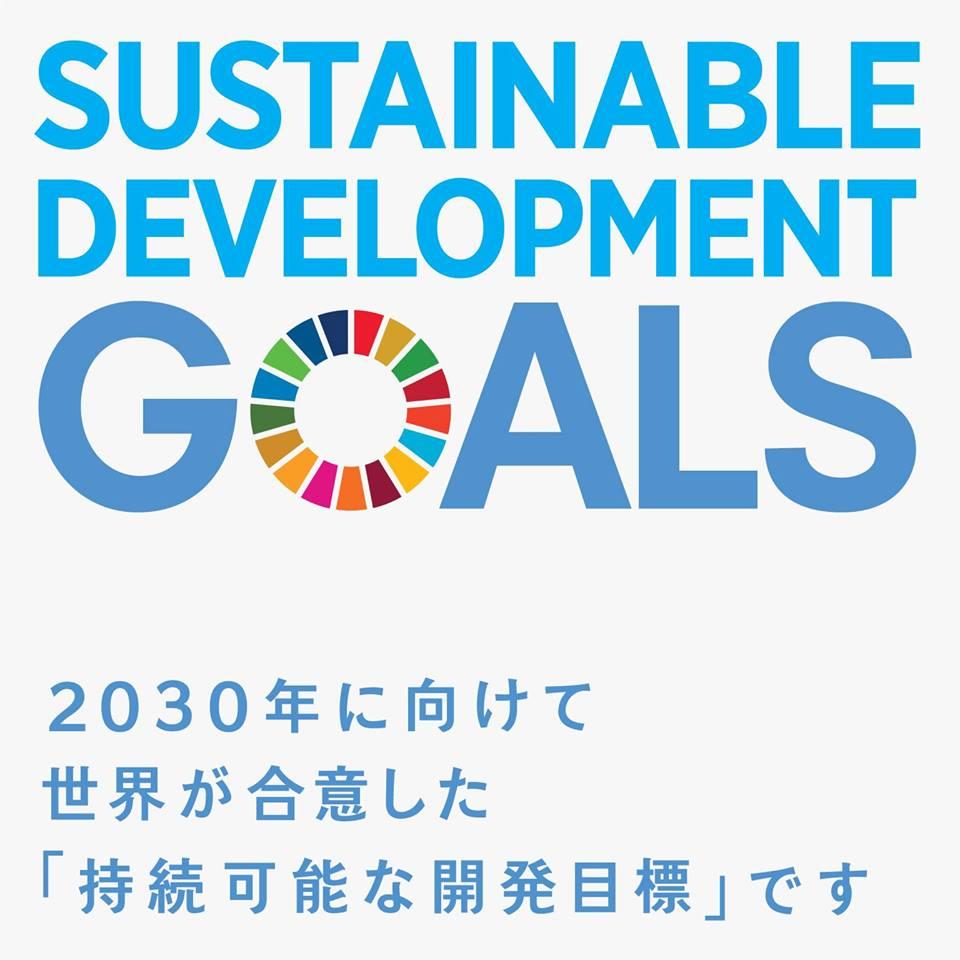 国連が定めた【SDGs(持続可能な開発目標)】をシミュレーションゲームで体験してみませんか? in 沖縄!