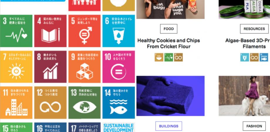 「SDGsカードゲーム × ビジネスイノベーション」ワークショップ