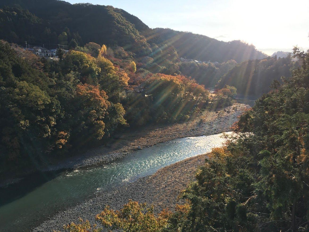 11/24-東京の紅葉の中で体験:のんびり田舎気分でSDGsカードゲーム