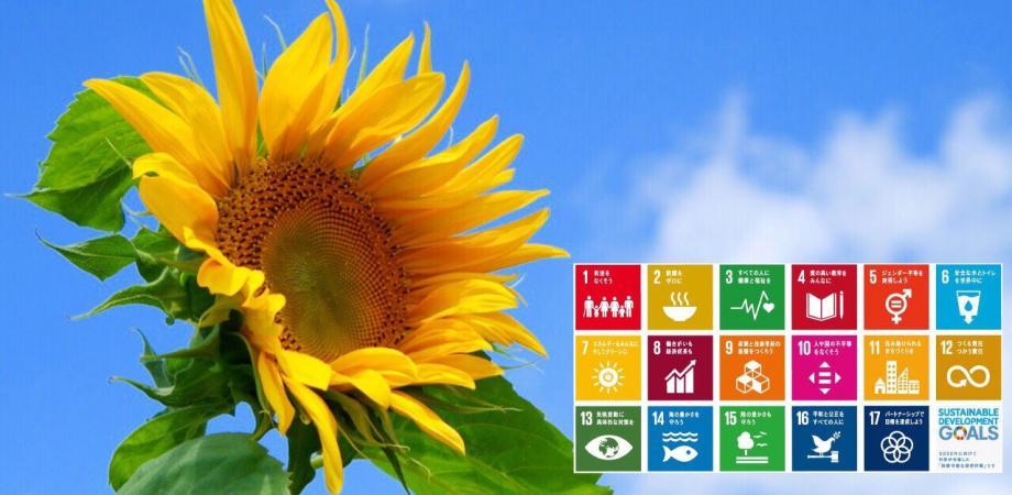持続可能な未来のためにじっくり向き合う ~2030SDGs~カードゲーム体験会&「考える会」inなんば