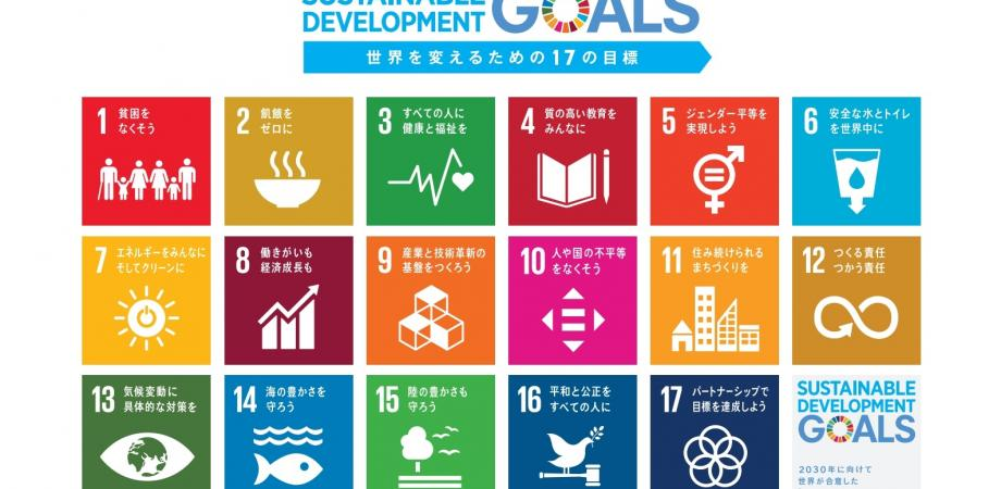 2030SDGs×LEGO®SERIOUS PLAY®